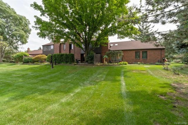 3050 Lindenwood Drive, Dearborn, MI 48120 (#218087728) :: Duneske Real Estate Advisors