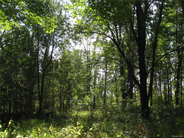000 Crofoot Road, Howell, MI 48843 (#218088386) :: Duneske Real Estate Advisors
