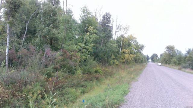 000 Fisher Road, Fremont Twp, MI 48032 (MLS #218088953) :: The Toth Team