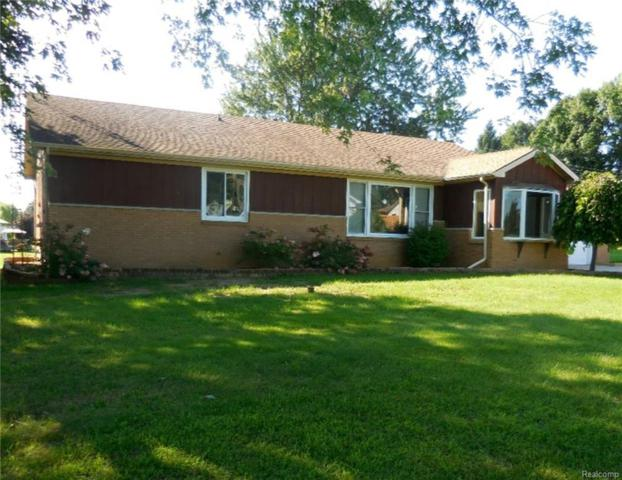 111 N Lake Pleasant Road, Attica Twp, MI 48412 (#218089607) :: RE/MAX Classic
