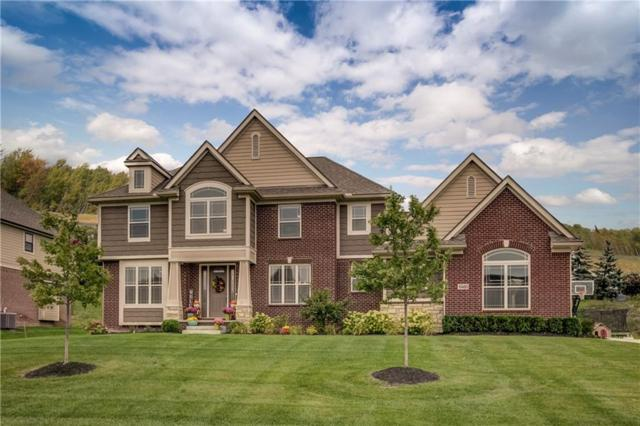 10480 Stoney Point Drive, Green Oak Twp, MI 48178 (#218090077) :: The Buckley Jolley Real Estate Team