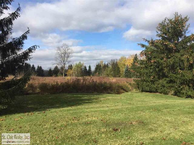 0 River Rd., East China Twp, MI 48054 (MLS #58031360088) :: The Toth Team
