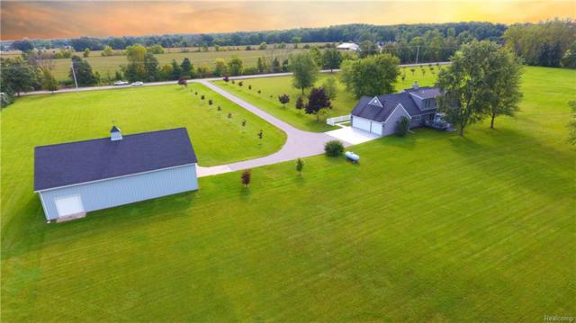 7100 S Elms Road, Gaines Twp, MI 48473 (#218092215) :: The Buckley Jolley Real Estate Team