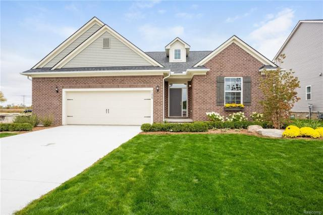 71600 Julius Drive, Bruce Twp, MI 48065 (#218092231) :: The Mulvihill Group