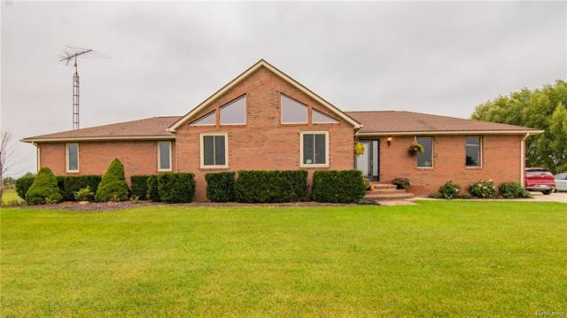 3365 Knoll Road, Mussey Twp, MI 48014 (#218092293) :: RE/MAX Classic