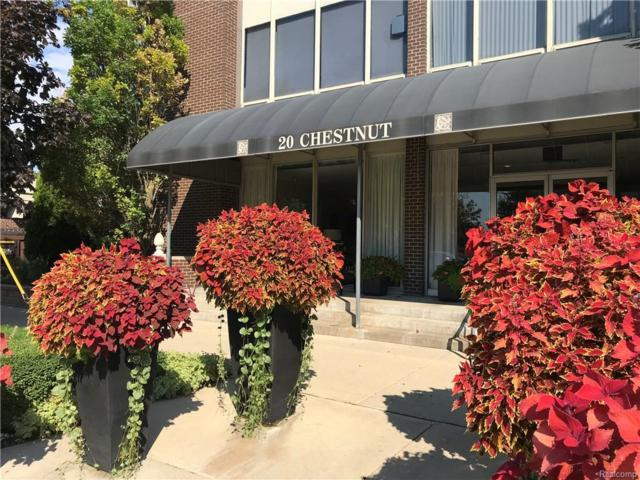 20 Chestnut Street #201, Wyandotte, MI 48192 (#218092966) :: Duneske Real Estate Advisors