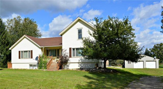 6893 Webster Road, Imlay Twp, MI 48444 (#218095685) :: The Buckley Jolley Real Estate Team