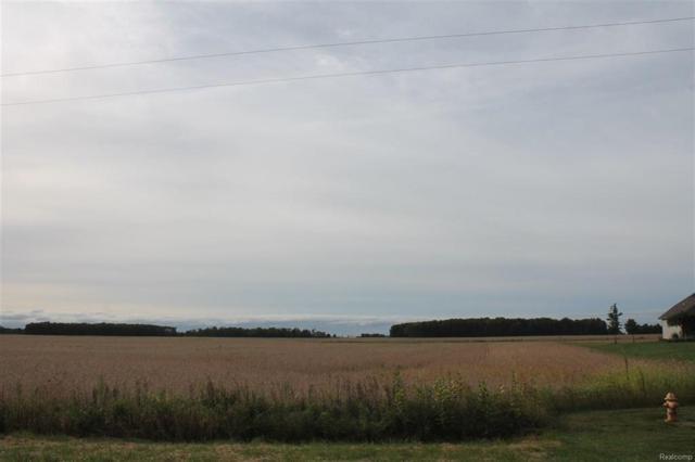 0 Dixon, Raisinville Twp, MI 48161 (#57031361711) :: The Mulvihill Group