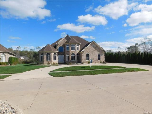 26950 Debiasi Drive, Brownstown Twp, MI 48174 (#218097390) :: The Buckley Jolley Real Estate Team