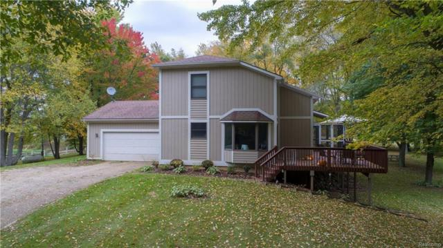 20155 Tipsico Lake Road, Rose Twp, MI 48442 (#218098810) :: The Buckley Jolley Real Estate Team