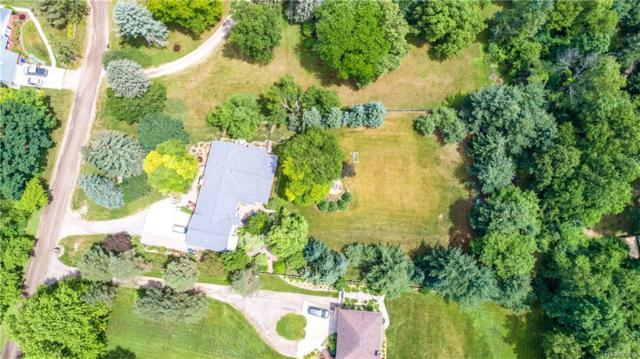 247 Whims Court, Oakland Twp, MI 48306 (#218100340) :: RE/MAX Classic