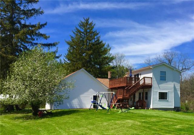 1169 Lake Nepessing Road, Elba Twp, MI 48446 (#218100857) :: The Buckley Jolley Real Estate Team
