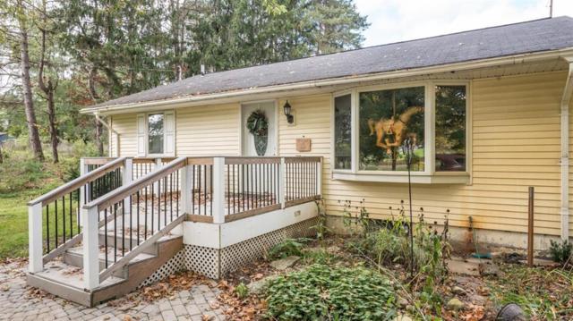 17800 W Pleasant Lake Road, Sharon Twp, MI 48158 (#543260649) :: Novak & Associates