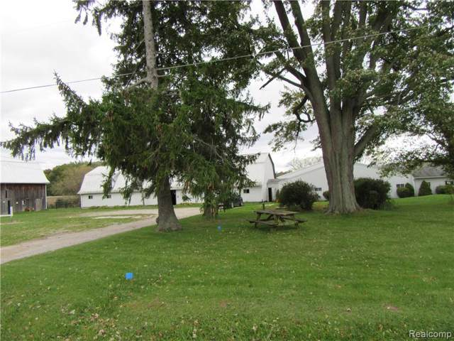7670 E Curtis Road, Frankenmuth Twp, MI 48734 (#218102167) :: The Buckley Jolley Real Estate Team