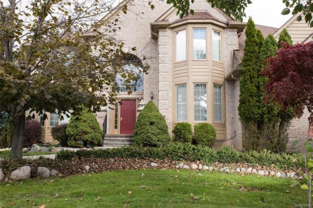 3566 Heron Ridge Drive, Rochester Hills, MI 48309 (#218103056) :: Duneske Real Estate Advisors
