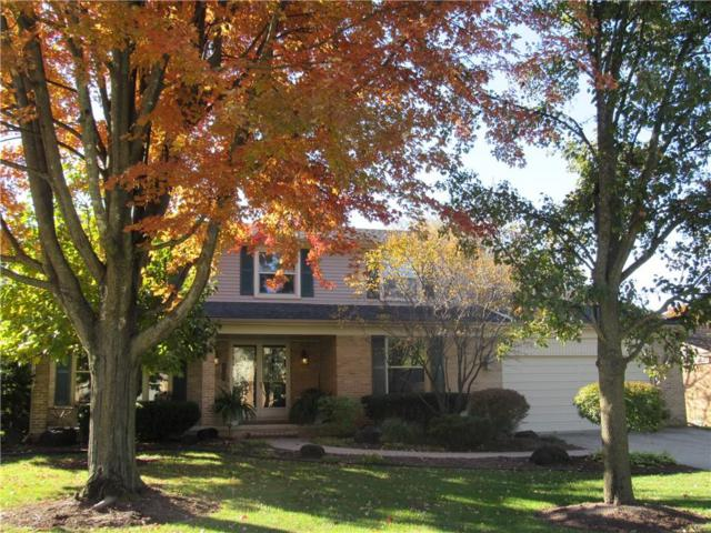 1661 Black Maple Drive, Rochester Hills, MI 48309 (#218104844) :: RE/MAX Vision