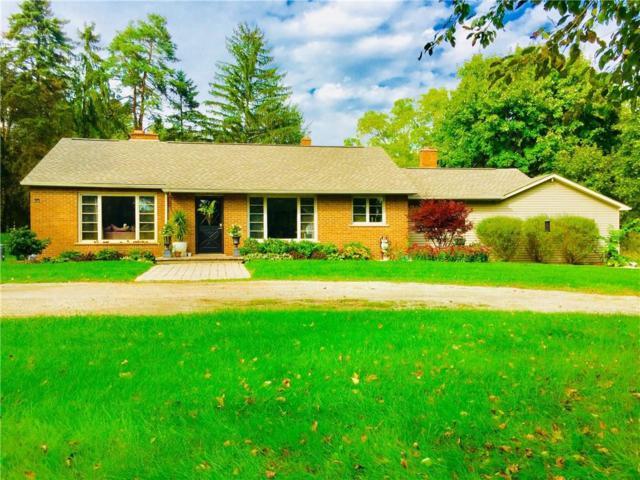 5350 Clarkston Road, Independence Twp, MI 48348 (#218105186) :: Duneske Real Estate Advisors