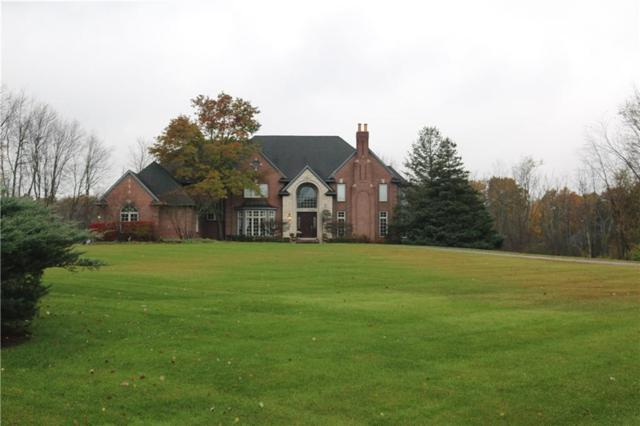 5300 Colyers Drive, Oakland Twp, MI 48306 (#218106354) :: RE/MAX Classic