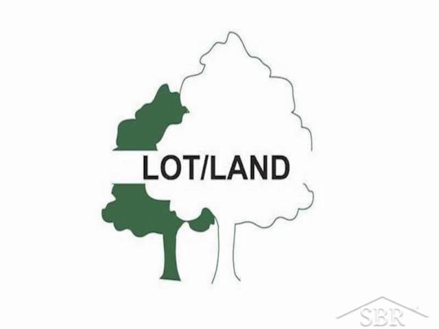 0 W Freeland, Tittabawassee Twp, MI 48623 (#61031365550) :: Team Sanford