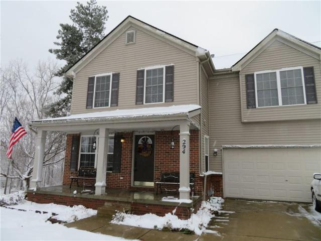 294 Clear View Court, Linden, MI 48451 (#218112285) :: RE/MAX Classic