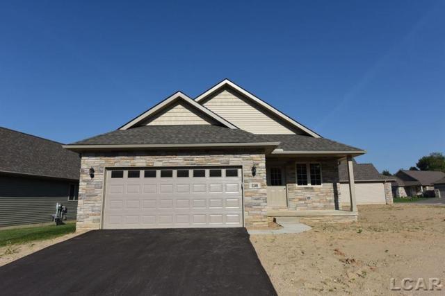 826 War Bonnet Dr Unit 64, Tecumseh, MI 49286 (#56031366150) :: The Alex Nugent Team | Real Estate One