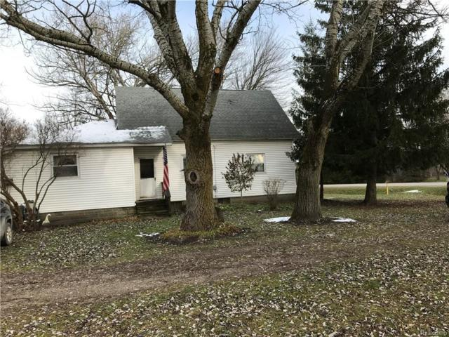 1145 Michigan Road, Port Huron Twp, MI 48060 (#218115171) :: The Buckley Jolley Real Estate Team