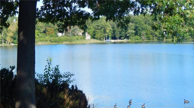 Between 1191 and 121 Beach Drive, Orion Twp, MI 48360 (#218117929) :: The Buckley Jolley Real Estate Team