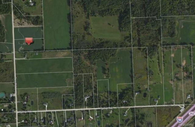 0 Stein Road, Saint Clair Twp, MI 48079 (#218119584) :: The Buckley Jolley Real Estate Team