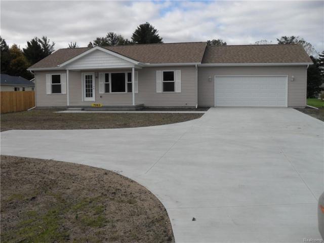 7063 Lakeshore Road, Burtchville Twp, MI 48059 (#219000434) :: The Buckley Jolley Real Estate Team