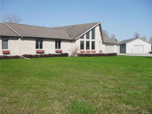 6694 Christine Lane, Burtchville Twp, MI 48059 (#219000680) :: The Buckley Jolley Real Estate Team