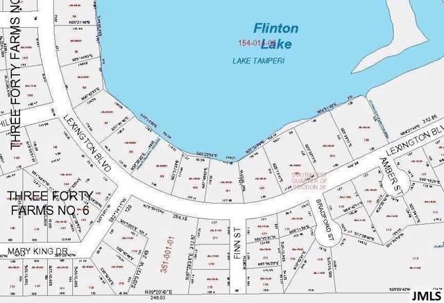0 Lexington Blvd, Summit, MI 49203 (#55201900060) :: The Alex Nugent Team | Real Estate One