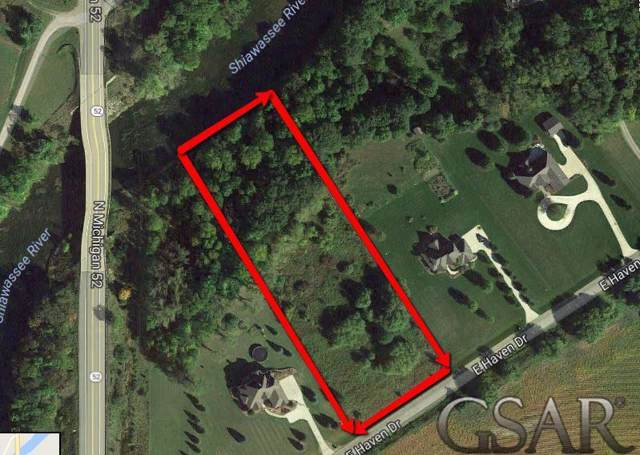 113 East Haven Drive, New Haven Twp, MI 48867 (#60031368815) :: The Mulvihill Group