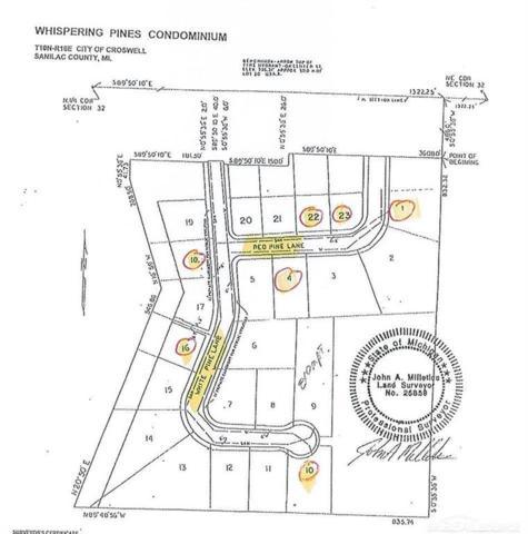 White Pine 18, Croswell, MI 48422 (#58031369341) :: Team Sanford