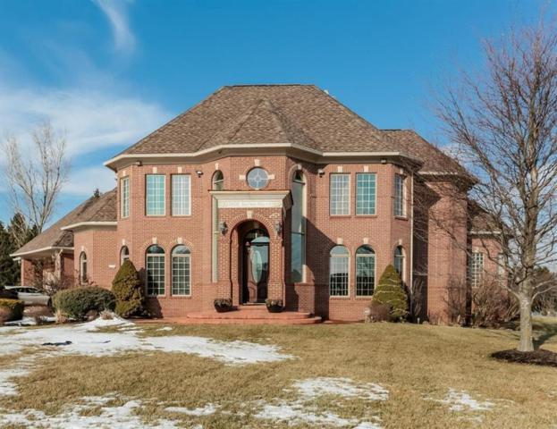 9166 Baron Court, York Twp, MI 48176 (#543262611) :: RE/MAX Nexus