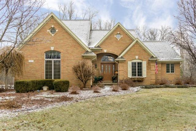 525 Lena Hill Drive, Addison Twp, MI 48367 (#219011636) :: The Buckley Jolley Real Estate Team