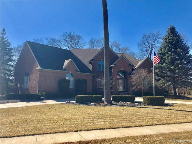 23748 Point O Woods Court, Lyon Twp, MI 48178 (#219012054) :: Duneske Real Estate Advisors