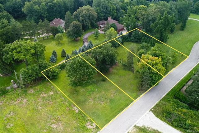 37576 Paula Ct, Clinton Twp, MI 48036 (#219012499) :: The Buckley Jolley Real Estate Team