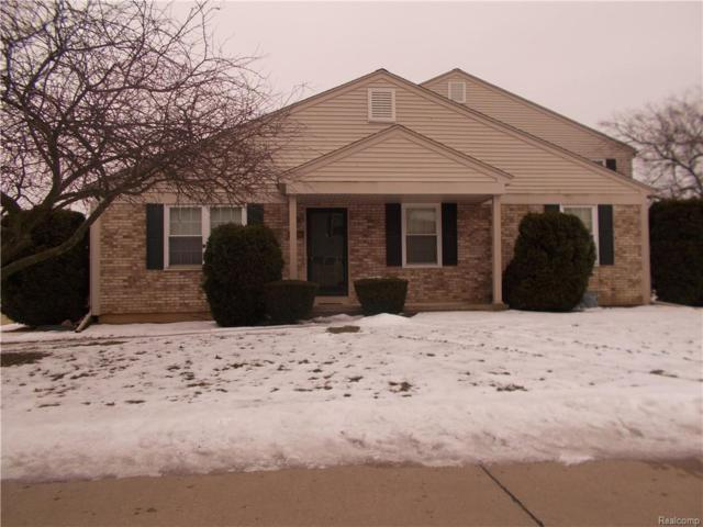 15816 N Franklin Drive, Clinton Twp, MI 48038 (#219013885) :: NERG Real Estate Experts