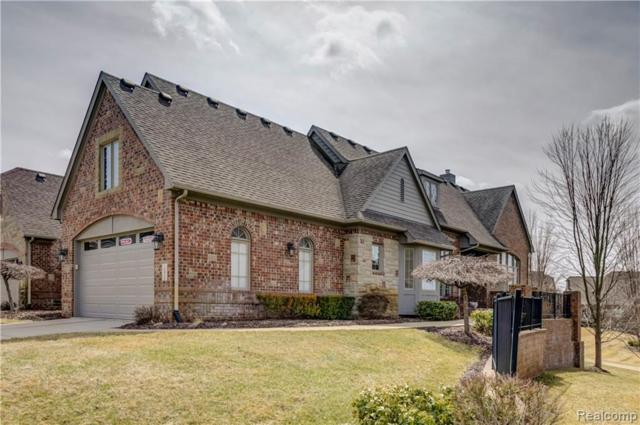 10832 Sparkling Waters Court, Green Oak Twp, MI 48178 (#219016794) :: The Mulvihill Group