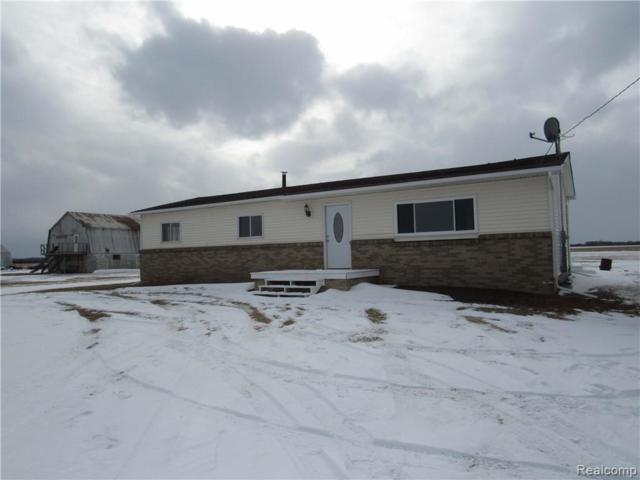 7905 S Van Dyke Road, Burnside Twp, MI 48453 (#219020877) :: RE/MAX Nexus
