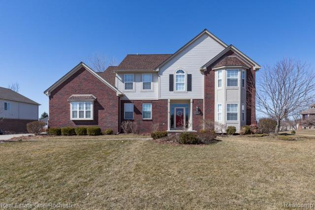 4122 Norwich Court, Oakland Twp, MI 48306 (#219023952) :: Team DeYonker