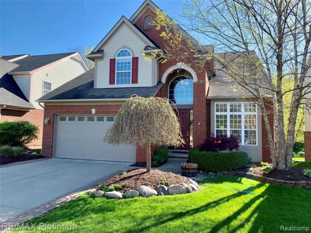 16544 Mulberry Way, Northville Twp, MI 48168 (#219027171) :: The Alex Nugent Team | Real Estate One