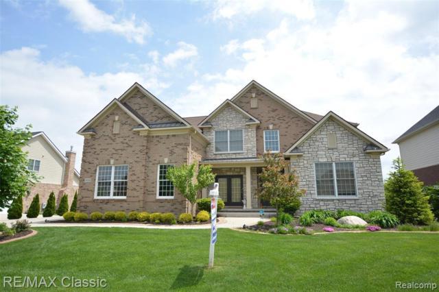 50348 Langley Drive, Novi, MI 48374 (#219027215) :: The Alex Nugent Team   Real Estate One