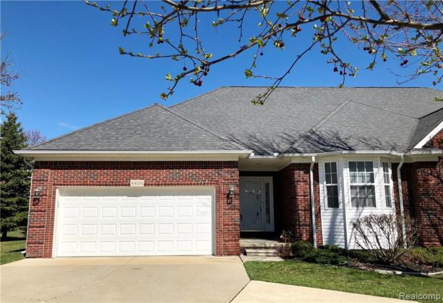 44261 Nova Drive, Sterling Heights, MI 48314 (#219029819) :: The Buckley Jolley Real Estate Team
