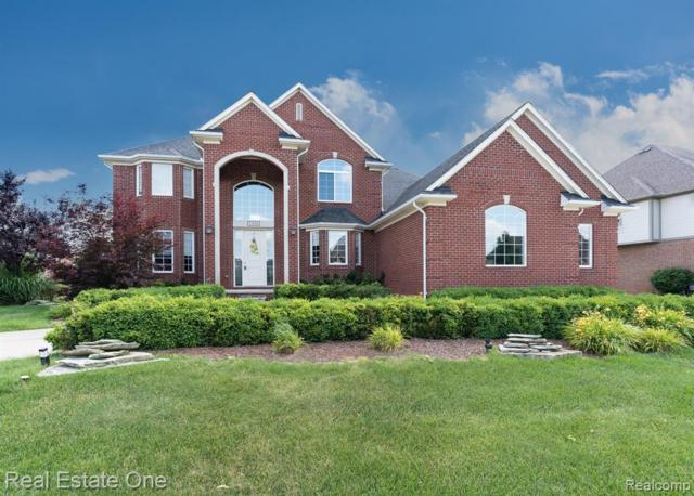 1436 Galena, Rochester Hills, MI 48306 (#219032141) :: The Buckley Jolley Real Estate Team
