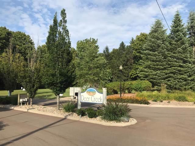 13841 Deer Creek Drive, South Haven Twp, MI 49090 (#630000235499) :: GK Real Estate Team