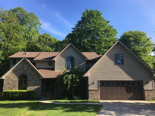 3443 Birch Grove Trail, Fort Gratiot Twp, MI 48059 (#219037589) :: The Buckley Jolley Real Estate Team
