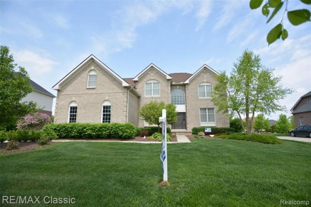 24791 Nepavine Drive, Novi, MI 48374 (#219039090) :: The Alex Nugent Team   Real Estate One