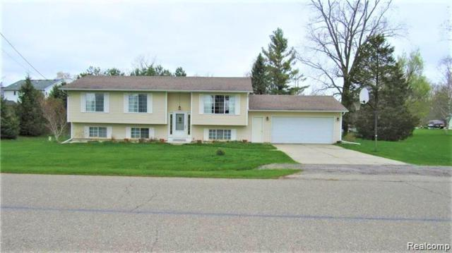 10325 Dar Lane, Atlas Twp, MI 48438 (#219039760) :: Team Sanford