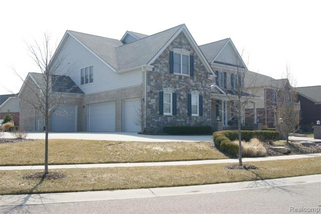 24844 Mallard Trail Lane, Novi, MI 48374 (#219040147) :: The Buckley Jolley Real Estate Team